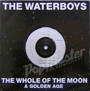 The Waterboys The Whole Of  The Moon  ENY 642 Folk Rock Winyl