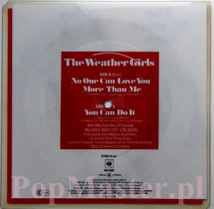 THE WEATHER GIRLS  NO ONE CAN LOVE YOU MORE THAN ME.. Picture disc  WA 688