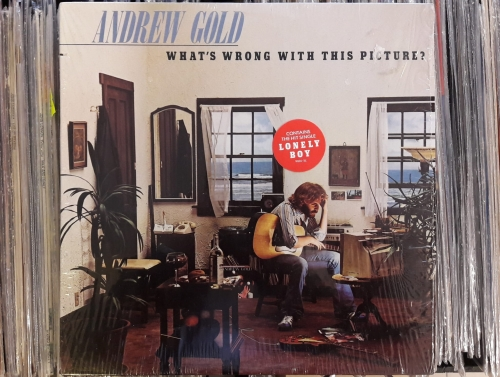 Andrew Gold - What's Wrong With This Picture? ,Asylum ...