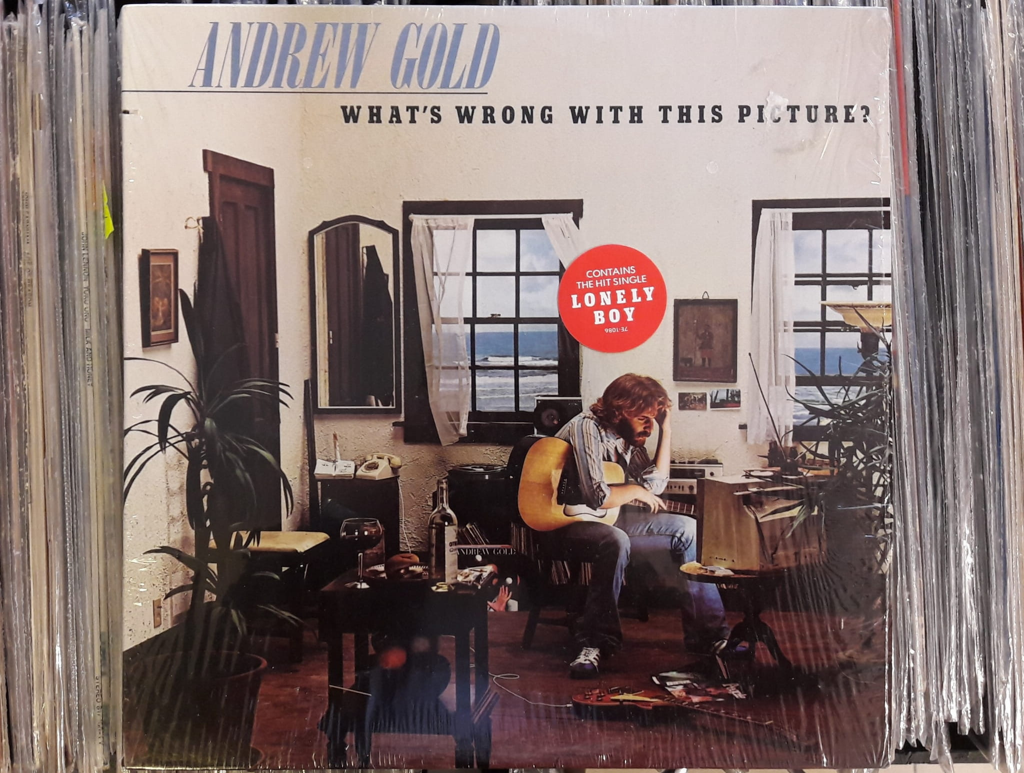 Andrew Gold What S Wrong With This Picture Asylum